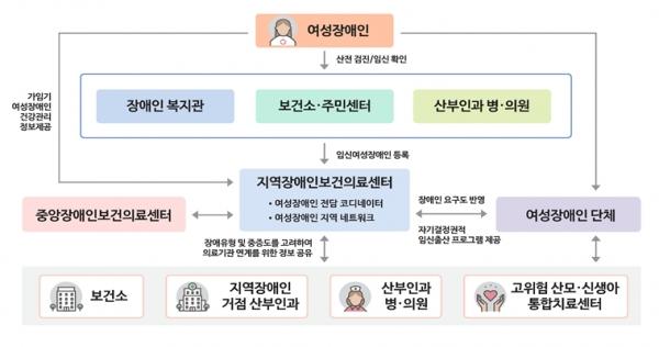 모성보건사업 추진 체계도. (출처=보건복지부)